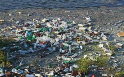 The Great Pacific Garbage Patch, un mostro di plastica nell'Oceano